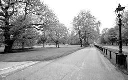 Het park van Hyde, zwarte & witte schot Stock Foto