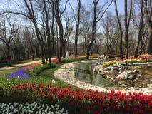 Het park van Istanboel Stock Afbeelding