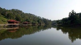 Het park van Jenaco Royalty-vrije Stock Fotografie