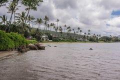 Het Park van het Kawaikuistrand, Oahau, Hawaï stock fotografie