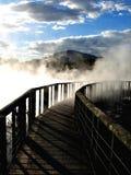Het Park van Kuirau, Rotorua Royalty-vrije Stock Afbeeldingen