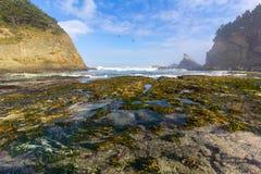 Het Park van kustacres Stock Afbeeldingen