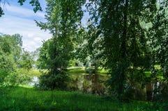 In het Park van Mikhailovskoye-de museum-reserve van de staat, Rusland Stock Afbeeldingen
