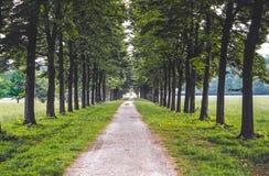 Het Park van Monza Stock Afbeeldingen