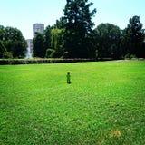 Het Park van Novi Sad Stock Foto's