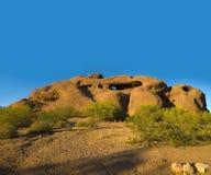 Het Park van Papaogo in Phoenix, AZ Royalty-vrije Stock Foto