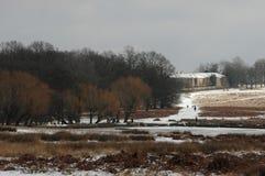 Het park van Richmond in de sneeuw Royalty-vrije Stock Afbeeldingen