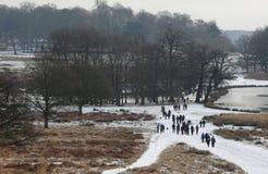 Het park van Richmond in de sneeuw Stock Foto