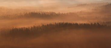 Het park van Saksen Zwitserland Royalty-vrije Stock Fotografie