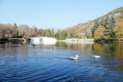 Het park van Sandanski Stock Foto's