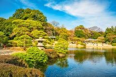 Het Park van Shinjukugyoen, Tokyo, Japan in de lente Stock Afbeeldingen