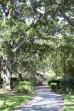 Het Park van Tamper stock foto