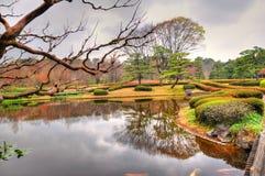 Het park van Tokyo Royalty-vrije Stock Foto