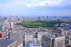 Het Park van Tokyo Yoyogi Stock Afbeelding