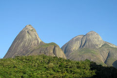 Het Park van Trespicos, Atlantisch Regenwoud, Brazilië Stock Afbeeldingen