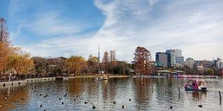 Het Park van Ueno stock foto's