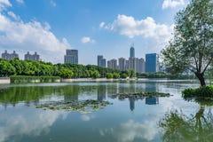 Het Park van het ventilatormeer in Wuhan stock fotografie