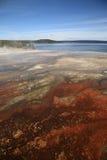 Het Park van Yellowstone - het Bassin van de Geiser van de Duim van het Westen Stock Foto's