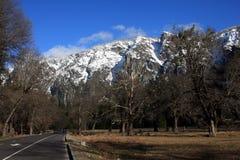 Het park van Yosemite Royalty-vrije Stock Foto's