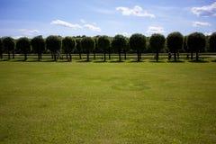 Het parkachtergrond van de zomer Stock Afbeelding