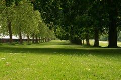 Het parkgebied van het Kasteel van Windsor Stock Foto