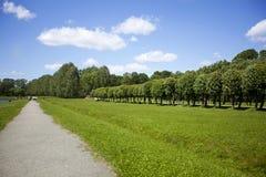 Het parklandschap van de zomer Royalty-vrije Stock Afbeelding