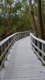 Het parksleep van Florida Royalty-vrije Stock Fotografie