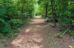 Het Parkweg van de Sweetwaterkreek royalty-vrije stock afbeelding