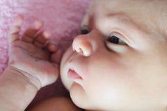 Het pasgeboren comfortabel liggen Stock Afbeeldingen