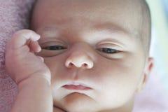 Het pasgeboren comfortabel liggen Royalty-vrije Stock Foto