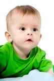 Het pasgeboren geïsoleerdef jonge geitje Royalty-vrije Stock Afbeelding