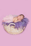 Het pasgeboren meisje in een rok Royalty-vrije Stock Foto's