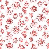 Het patroon superfood rozebottel van het bessenpictogram, aardbei, acai, framboos, juniperus, Amerikaanse veenbes, duindoorn, ker vector illustratie