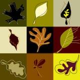 Het patroon van bladeren vector illustratie