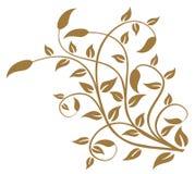 Het patroon van bladeren en van wijnstokken Stock Foto