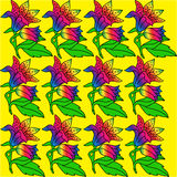 Het patroon van bloemen Royalty-vrije Stock Foto