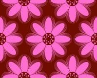 Het patroon van bloemen Royalty-vrije Stock Fotografie