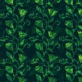 Het patroon van de bloem Stock Afbeelding