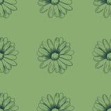 Het patroon van de bloem Kamille die op een groene achtergrond trekken Vector Stock Illustratie
