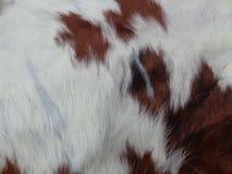 Het patroon van de buffelshuid Stock Foto