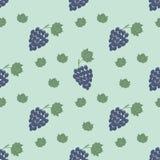 Het patroon van de druiventak stock illustratie