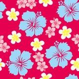 Het patroon van de hibiscus Stock Foto