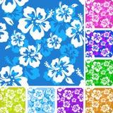 Het patroon van de hibiscus Stock Fotografie