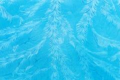 Het patroon van de Hoarvorst op windscherm Royalty-vrije Stock Foto's