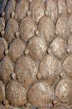 Het Patroon van de Hulp van Bas van Cactus Stock Foto's