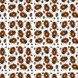 Het Patroon van de lieveheersbeestjefoto Stock Fotografie