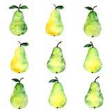 Het patroon van de perenwaterverf Stock Afbeelding