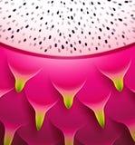 Het patroon van de pitayatextuur van het draakfruit Stock Afbeeldingen