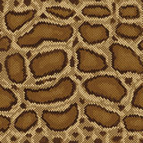Het Patroon van de python Royalty-vrije Stock Afbeeldingen