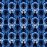 Het patroon van de röntgenstraalschedel Royalty-vrije Stock Foto